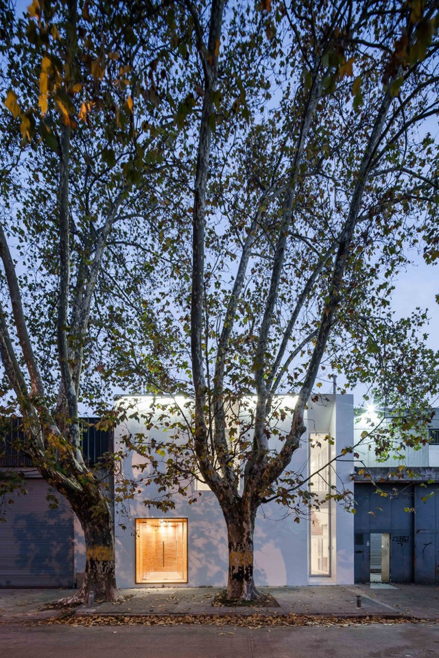 Uruguay: Oficinas PRINZI, Montevideo - Cotignola, Staricco, Tobler