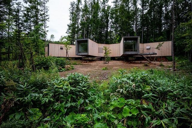 Japón: Casa en el bosque - Florian Busch Architects